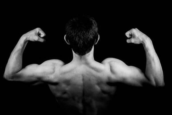 Proteínas Vegetais: A Solução Para Acelerar O Metabolismo
