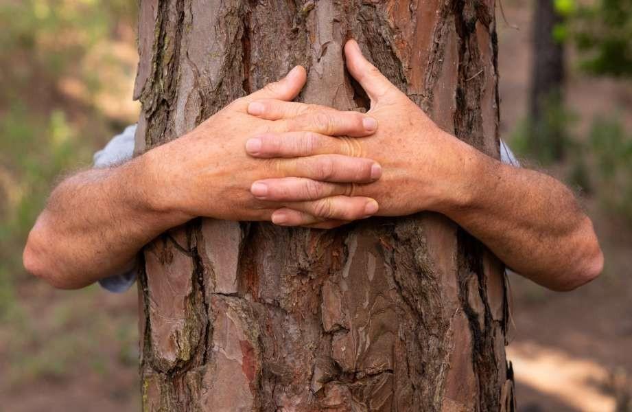 Proteggere gli habitat per proteggere il nostro futuro