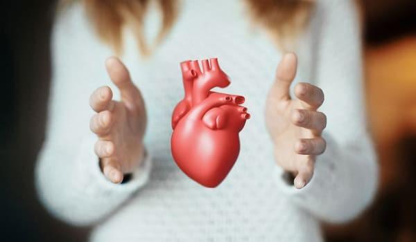 Colesterol e Triglicéridos