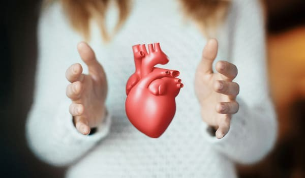 ¿Qué Es El Colesterol Y Qué Son Los Triglicéridos?