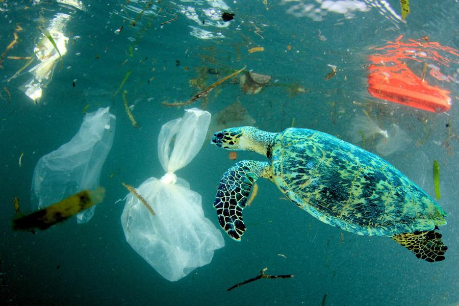 Come vivere con meno plastica
