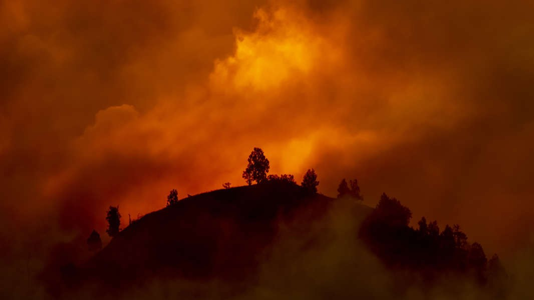 What can we do to stop wildfires?