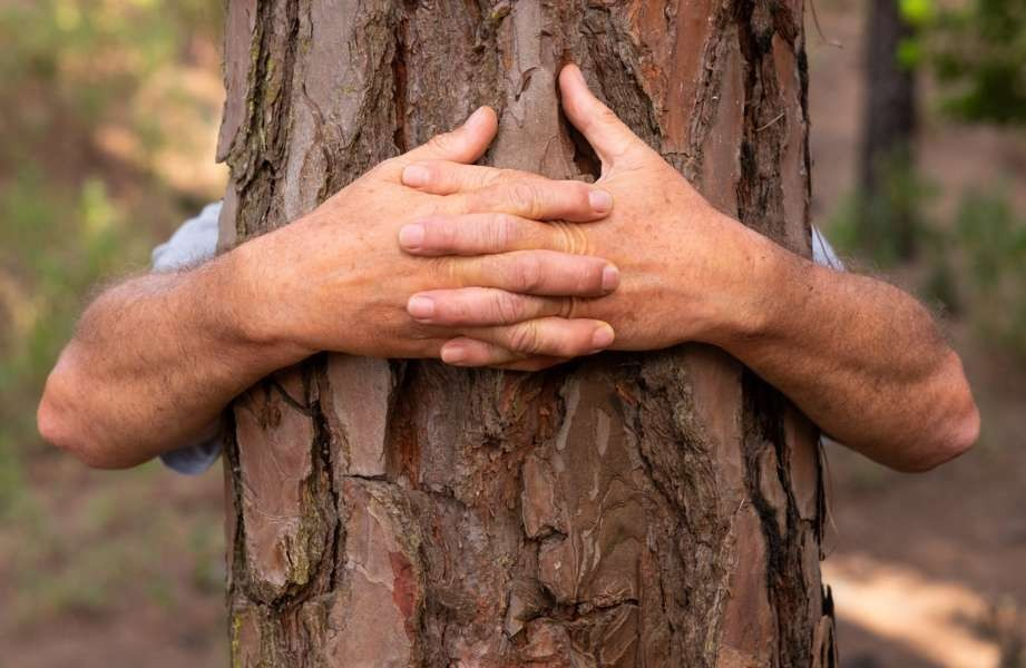 Proteger os habitats naturais para salvar o nosso futuro